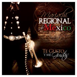 Mariachi Regional de Mexico - Mariachi Band / Spanish Entertainment in Denver, Colorado