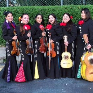 Mariachi Sirenas - Mariachi Band / Wedding Musicians in Chicago, Illinois