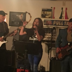 Marley and the Vice - Classic Rock Band in Avon, Ohio
