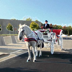 Marriage, Carriage and More, LLC - Horse Drawn Carriage / Children's Party Entertainment in Fredericksburg, Virginia