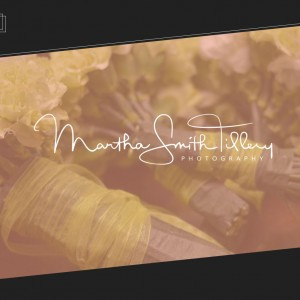 Martha Smith Tillery Photography - Photographer in Raleigh, North Carolina