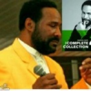 Marvin Gaye Tribute - Tribute Artist / Impersonator in Cleveland, Ohio