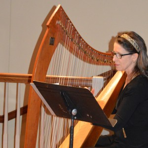Mary Kay Mann - Celtic Music / Harpist in Media, Pennsylvania
