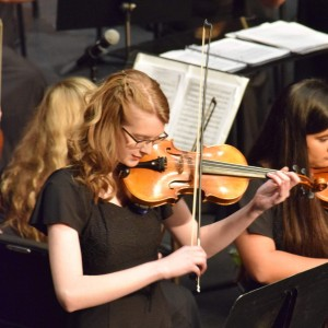 Fair's Classical Entertainment - Violinist / String Quartet in Nashville, Tennessee