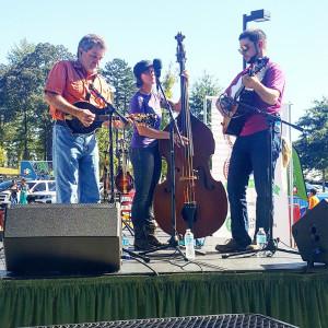Slow Drawl - Bluegrass Band in Taylors, South Carolina