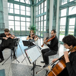 Master Musicians, Inc. - Classical Ensemble / String Quartet in Delray Beach, Florida