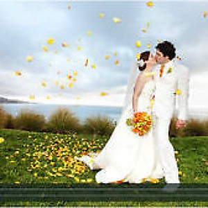 Matt Thompson Productions - Wedding Videographer / Wedding Services in Vancouver, British Columbia