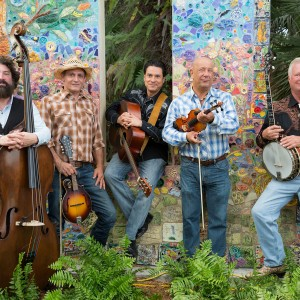 Matthew Sabatella and the Rambling String Band - Bluegrass Band in Miami, Florida