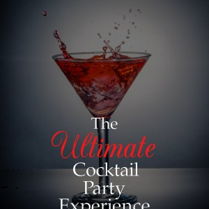 MDB Ethnic Events & Party Planning Services - Bartender in Providence, Rhode Island
