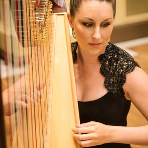Megan Stout / Professional Harpist - Harpist in St Louis, Missouri