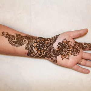 Mehendi Designer Cum Beauty - Henna Tattoo Artist / Temporary Tattoo Artist in New Hudson, Michigan