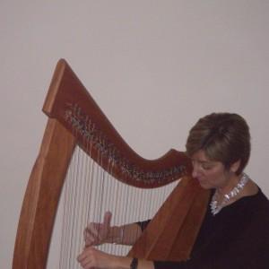 Meredith Kohn Bocek - Harpist in Apalachin, New York