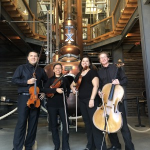 Meridian String Quartet - String Quartet / Wedding Entertainment in Arlington, Texas