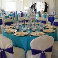 Metrowest Party Rental - Party Rentals in Framingham, Massachusetts