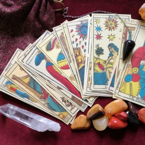 Michelle Swenson - Tarot Reader / Halloween Party Entertainment in Salt Lake City, Utah