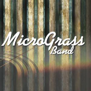 MicroGrass Band - Americana Band / Classical Pianist in Denver, Colorado