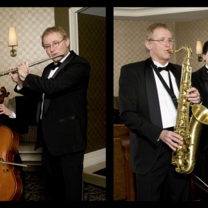 Mike Davis Trio - Classical Ensemble / Holiday Party Entertainment in Traverse City, Michigan