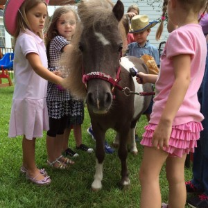 Miniaturehorseparty - Petting Zoo / College Entertainment in Tallahassee, Florida