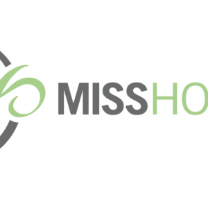 Miss Hostess - Wedding Planner / Wedding Services in Athens, Ohio