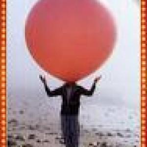 Mister Balloon Company