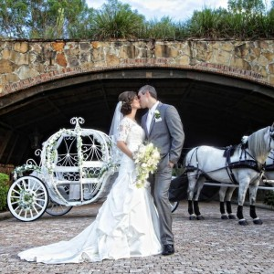 Misty Blue Acres LLC - Horse Drawn Carriage in St Cloud, Florida