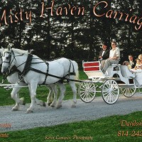 Misty Haven Carriage - Horse Drawn Carriage in Davidsville, Pennsylvania