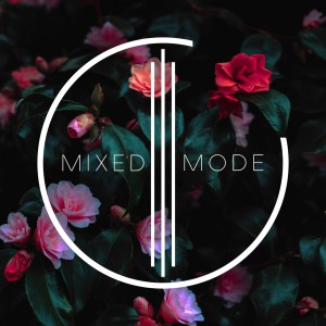 Mixed Mode - A Cappella Group in Orlando, Florida