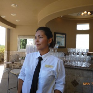 Mobile Bartender - Bartender / Wedding Services in Franklin, Tennessee
