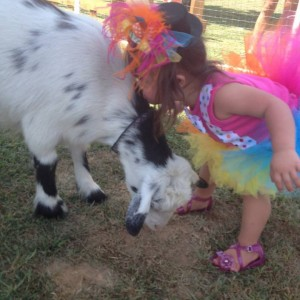 Molly's Ark Mobile Petting Zoo & Pony/Horse Rides - Petting Zoo in Erin, Tennessee