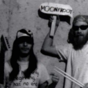 MoonFroot - Classic Rock Band / Cover Band in La Grange, Illinois