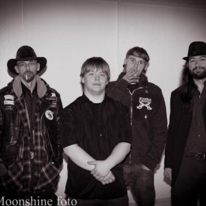 Moonshine Blues - Cover Band / College Entertainment in Gurnee, Illinois