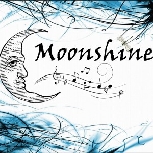 Moonshine - Acoustic Band in Palatine, Illinois