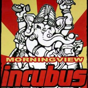"""Morning View"" INCUBUS Cover Band - Cover Band in San Antonio, Texas"