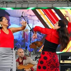 MosaicoFlamenco - Flamenco Dancer / Dancer in Birmingham, Alabama