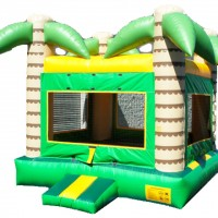 Mr. Moonwalk, LLC - Party Rentals in Fort Wayne, Indiana