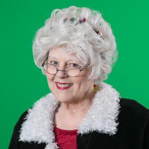 Mrs. Claus - Storyteller in Alpharetta, Georgia