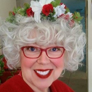 Mrs. Claus - Mrs. Claus / Children's Party Entertainment in Lafayette, Indiana