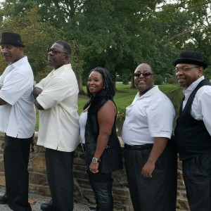 MTS Music or Diamond Cut - Party Band / Halloween Party Entertainment in Cleveland, Ohio