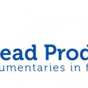Multihead Productions - Wedding Videographer in Chicago, Illinois