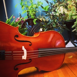 Multiinstrumentalist - Cellist in Barrie, Ontario