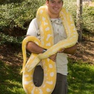 Kids Reptile Parties - Reptile Show / Outdoor Party Entertainment in Murrieta, California