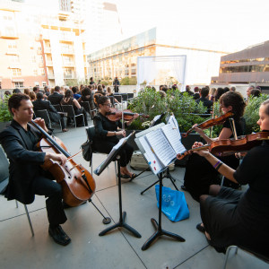 Musical Discovery Chamber Players - String Quartet / Wedding Entertainment in Austin, Texas