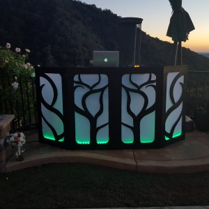Musical Phunktions Celebration DJs - Wedding DJ / Wedding Musicians in Santa Monica, California