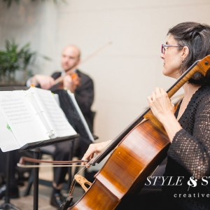 Columbus Musicians, LLC - String Quartet / Bassist in Columbus, Ohio