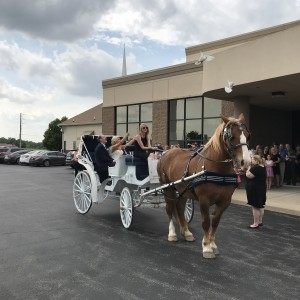 MW Carriage Company - Horse Drawn Carriage / Wedding Services in Beecher City, Illinois