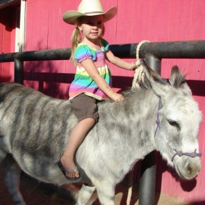 My Party Ponies - Pony Party in Gilbert, Arizona