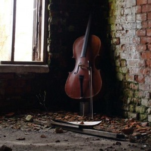 Naragon Duo - Classical Duo / Cellist in Medina, Ohio