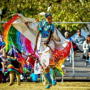 Native Insights - Native American Entertainment in Orlando, Florida