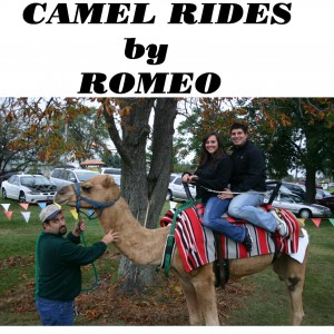 Nature's Creek Zoo (camel rides and exotic zoo) - Petting Zoo in Monroe, Michigan