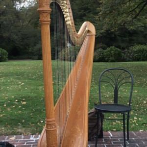 New York Harpist - Harpist / Celtic Music in Glen Cove, New York